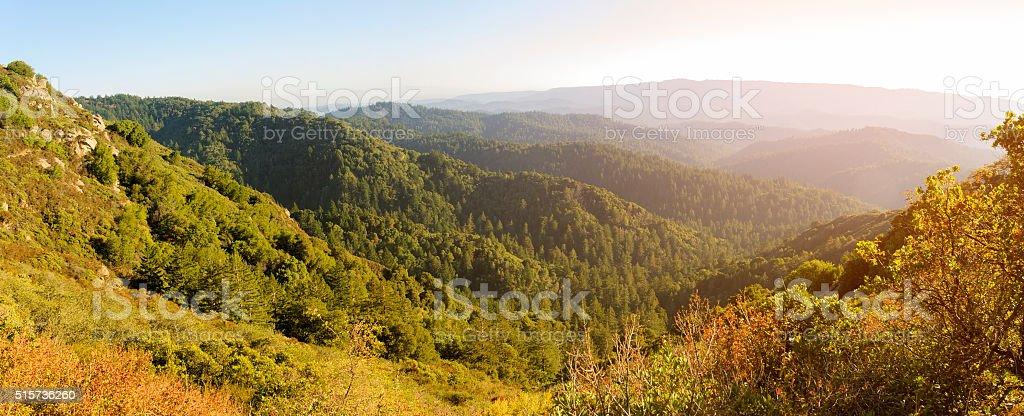 Santa Cruz Mountains stock photo