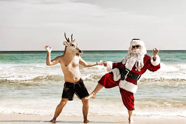 サンタダンスと友人 - トナカイ ストックフォトと画像