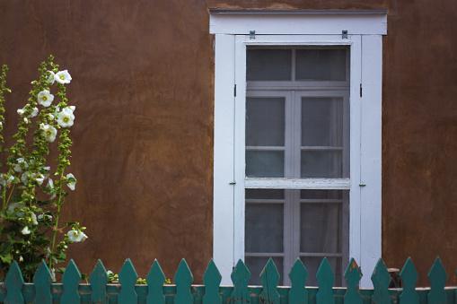 Santa Fe, NM: White Hollyhocks, Adobe Wall, White Window