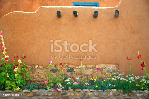 Stucco Wall and Flowers