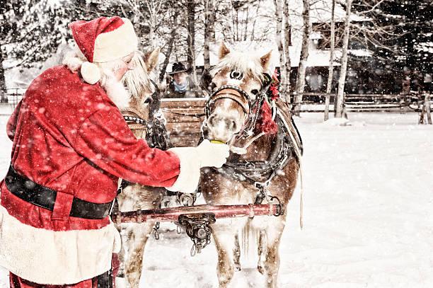 Santa Feeding Green Apples To A Team of Horses stock photo