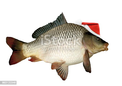 istock Santa hat on christmas carp 863120346