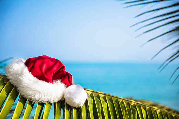 Santa hat resting on Palm Leaf in the tropics stock photo
