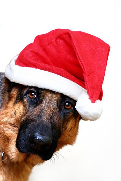 Santa kommt – Foto