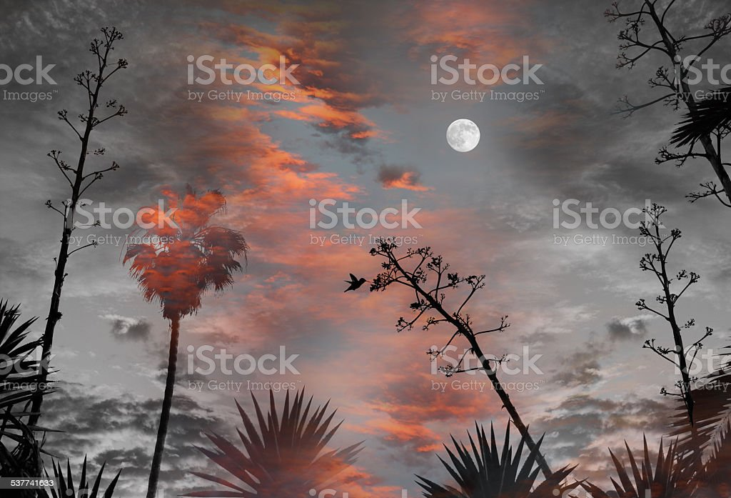 Santa Monica Fantasy View stock photo