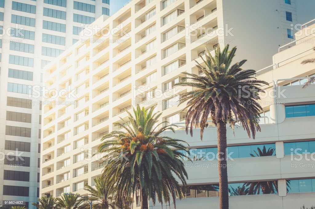 Santa Monica office buildings with palms stock photo