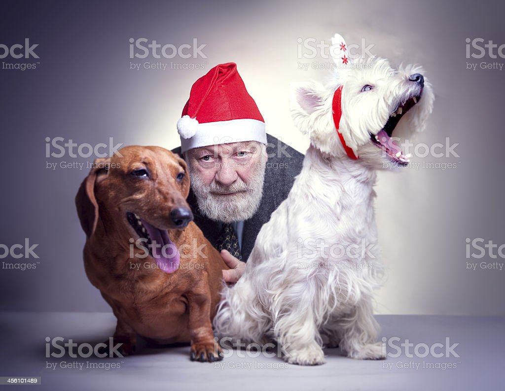 Santa with two dogs royalty-free stock photo