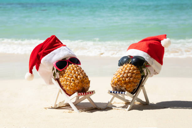 Santas hat and sunglasses over the pineapple at beach picture id1179127578?b=1&k=6&m=1179127578&s=612x612&w=0&h=g rxppvd4war 3as4fetwf4l1kzbzhjayqetxb554f0=