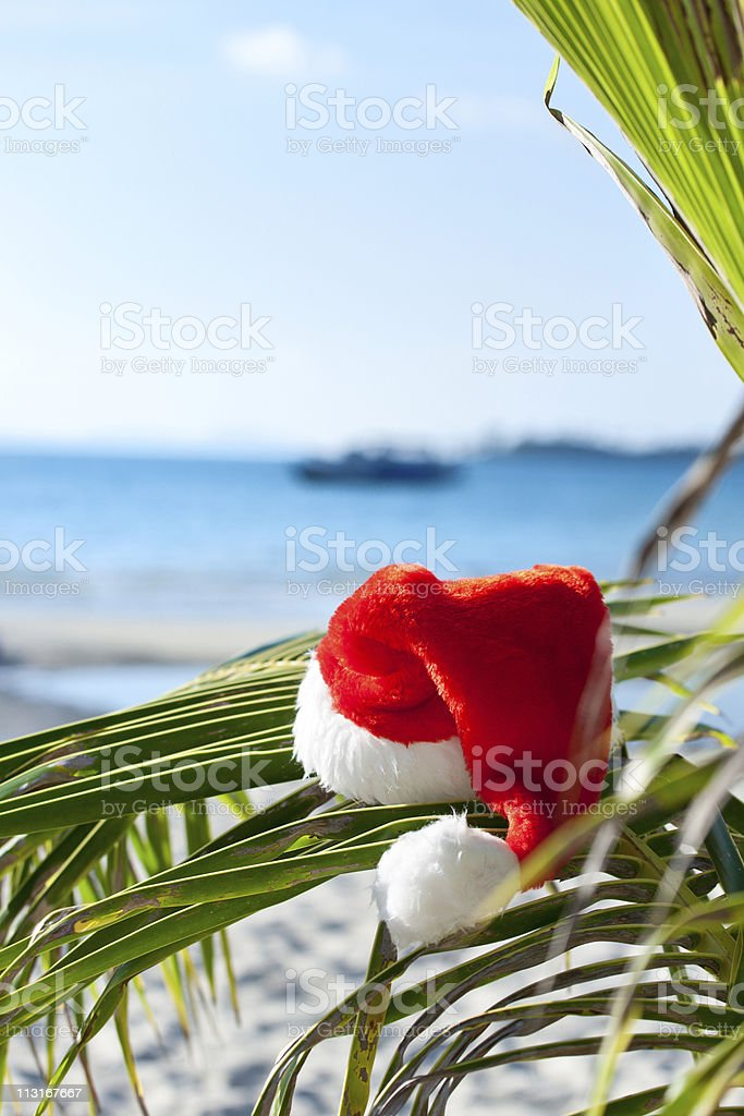 Santa's hat hanging on palm tree at the tropical beach royalty-free stock photo