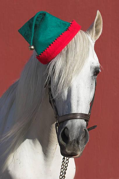 Santas Helper stock photo