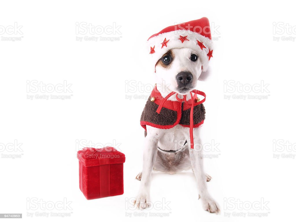 Santas Helper royalty-free stock photo