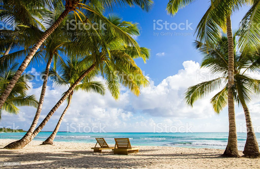 Saona island beach stock photo