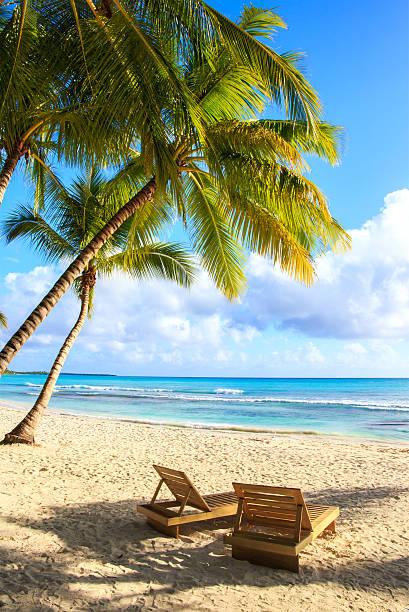 Saona island beach stock photo