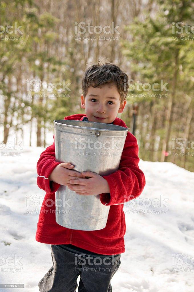 sap bucket royalty-free stock photo