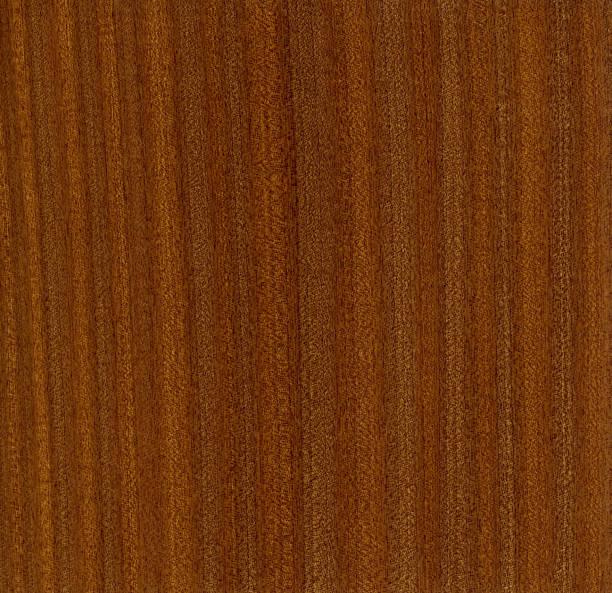 sapele wood veneer, Entandrophragma cylindricum stock photo