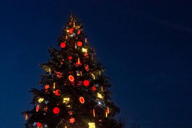 Sapin de Noël de Strasbourg Chaque année la ville de Strasbourg érige un Sapin de Noël géant sur la place Kléber. sapin noel stock pictures, royalty-free photos & images