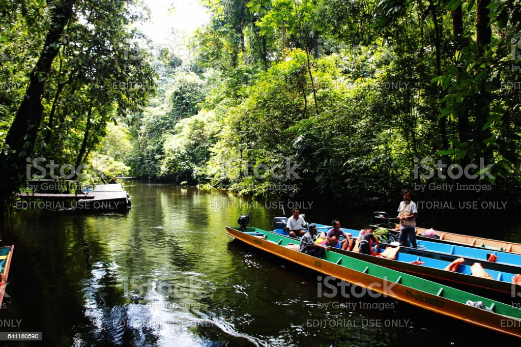 Sarawak river longboat stock photo