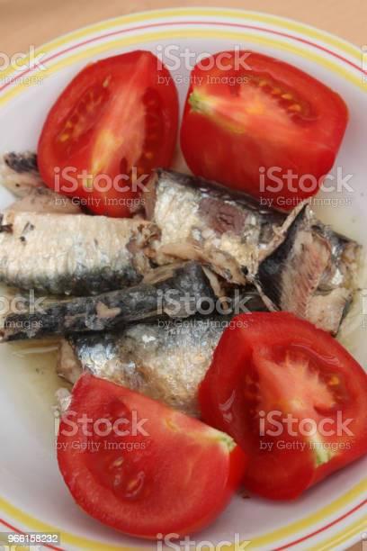 Sardinen In Öl Tomaten Aus Dem Garten Stockfoto und mehr Bilder von Fisch