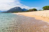 istock Sardinia beach.Panoramic landscape of sardinia.Mountains and pine-trees view at the beach. 1309943222