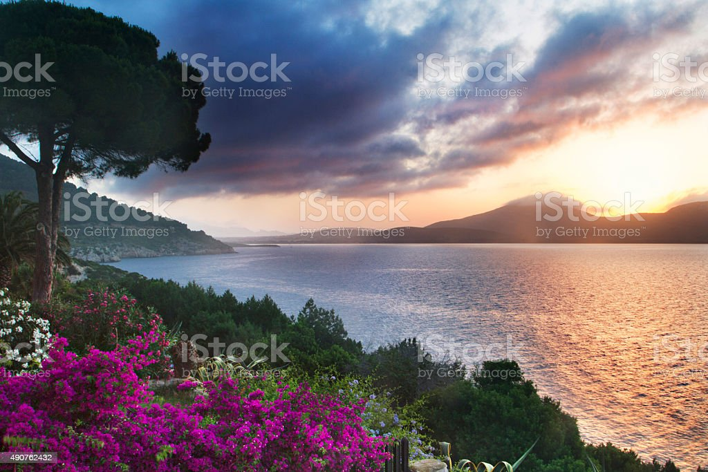 Sardinian garden at dusk stock photo