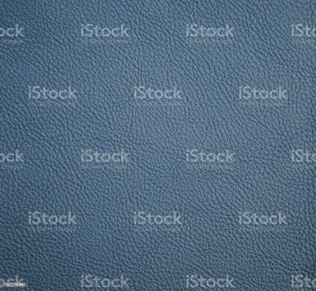 Sargasso leather texture for background stock photo