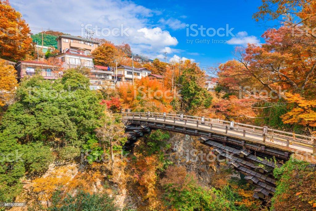 Saruhashi Monkey Bridge stock photo