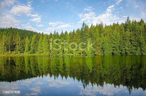 istock Sasamat Lake 1263707836