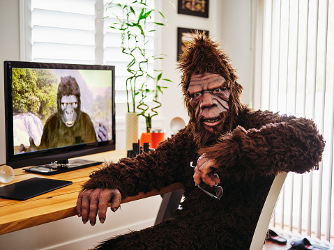 Sasquatch and Gorilla on a Web Chat
