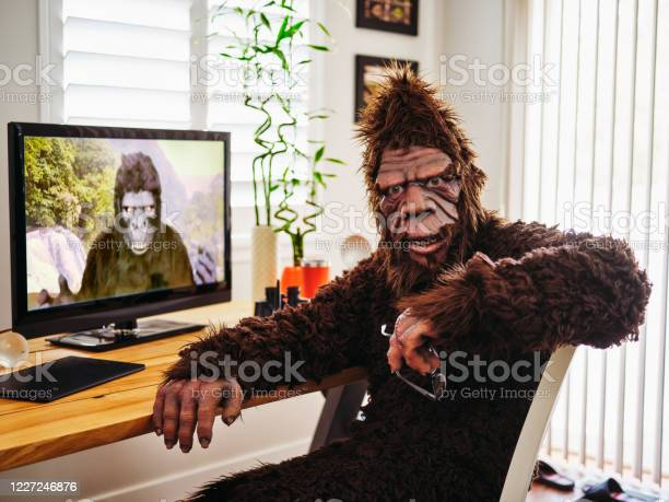 Sasquatch and gorilla on a web chat picture id1227246876?b=1&k=6&m=1227246876&s=612x612&h=1  rnrf7efgix51xwst7z0f3hk2wlrph5yk1ndiquz4=