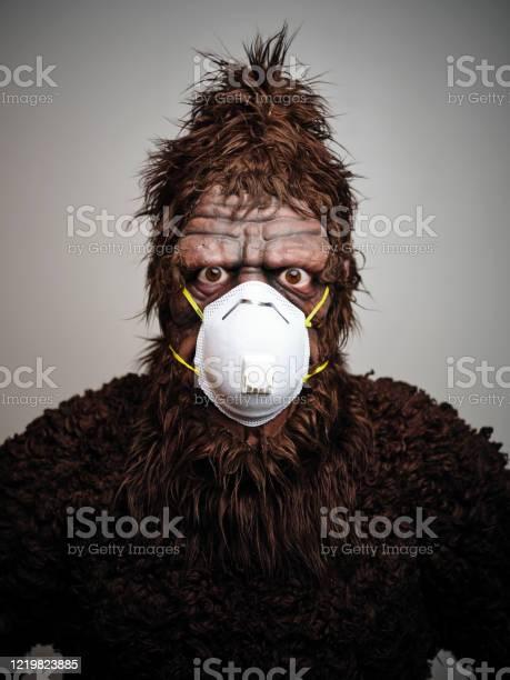 Sasquatch wearing a mask picture id1219823885?b=1&k=6&m=1219823885&s=612x612&h=zcxtntxhw7ze6hlbsnksstjx2uwwogy7gxs1l8mx9fs=