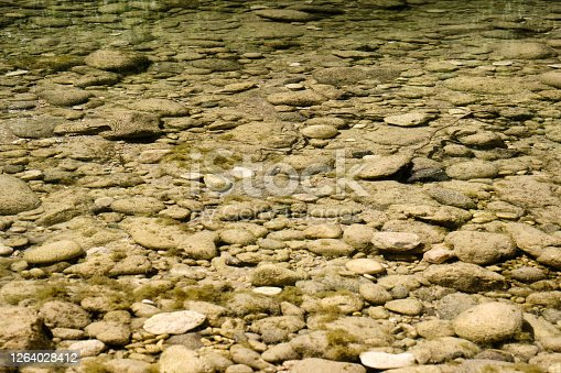 Sassi sotto le acquee basse di fiume