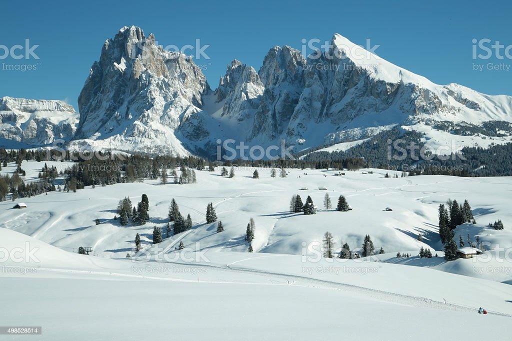 Sassolungo Sassopiatto mountains, Alpe di Siusi, Trentino Alto Adige, Italy stock photo