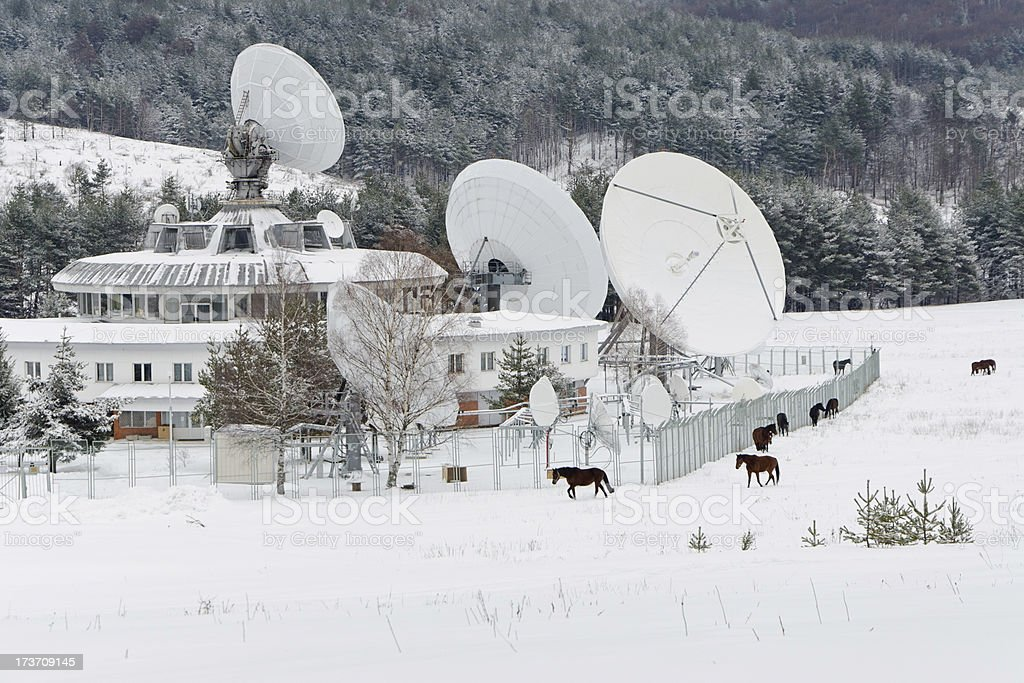 Satellite and Horses royalty-free stock photo
