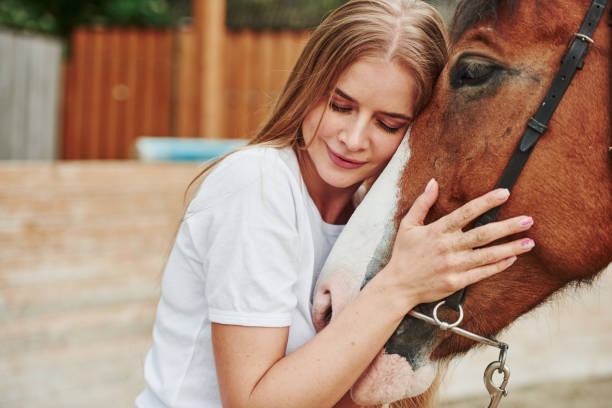 Satisfied girl. Happy woman with her horse on the ranch at daytime stock photo