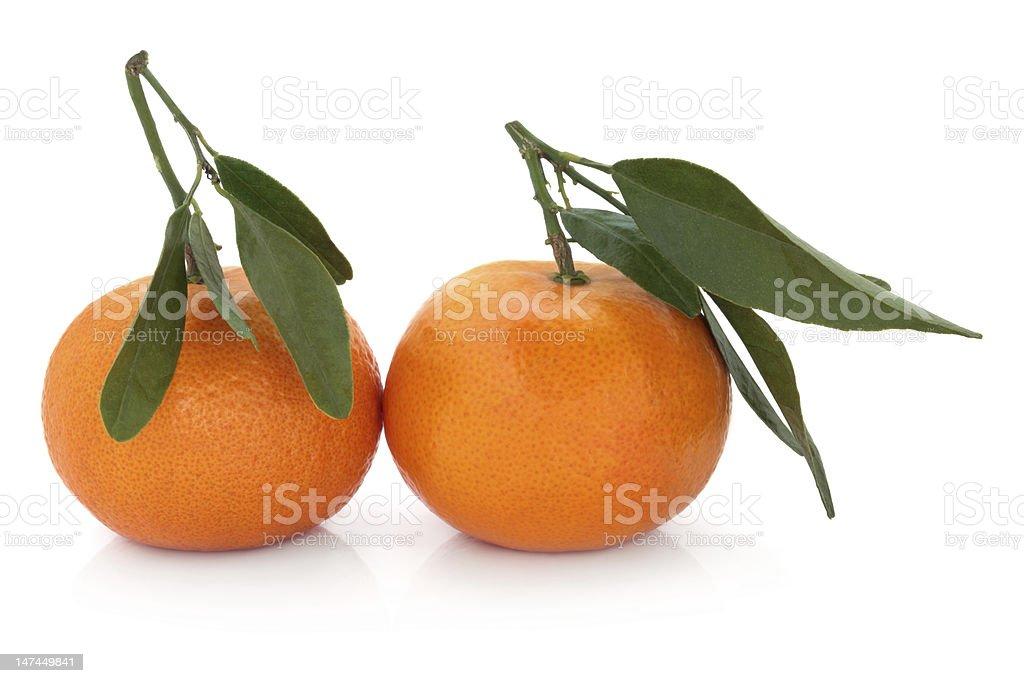 Satsuma Fruit stock photo