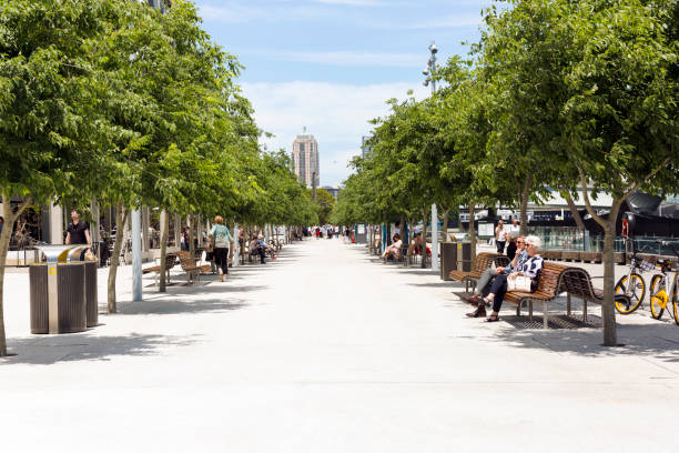 saturday afternoon at barangaroo with view to draling harbour - barangaroo stock photos and pictures