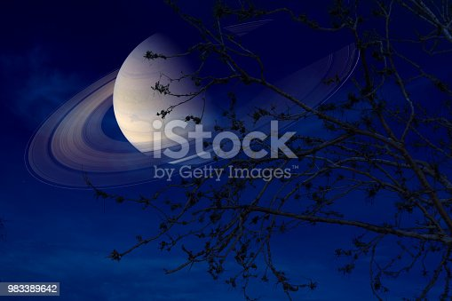 Saturn near earth on night sky back silhouette dry branch tree, Elements of this image furnished by NASA