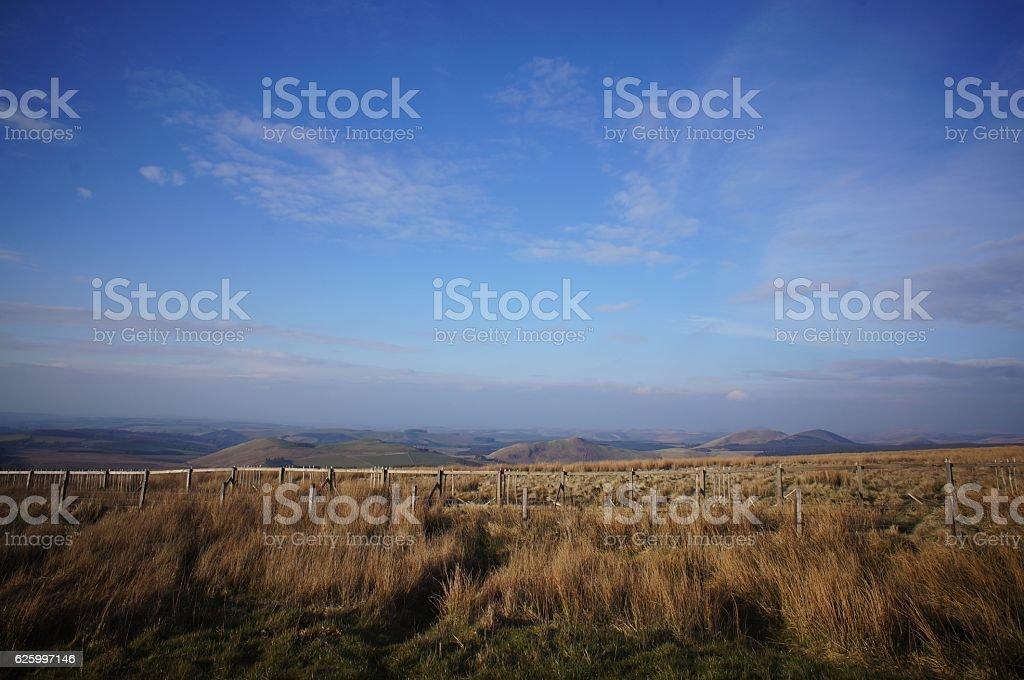 Savana, Meadow, Hills with blue sky stock photo