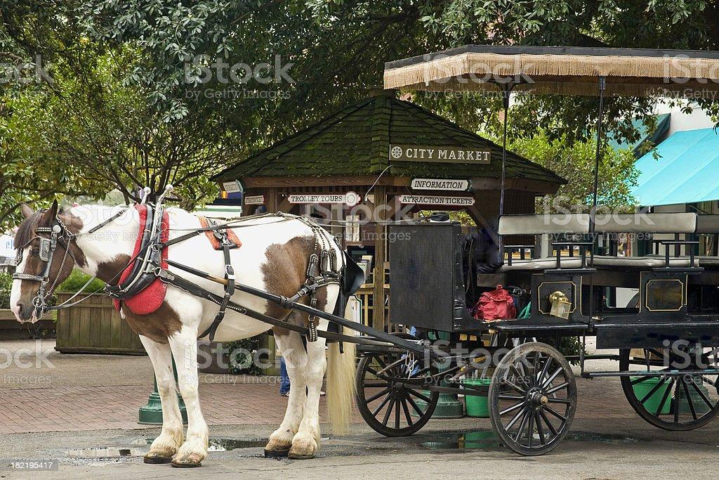 Savanah GA: Horsecart for Tourists at City Market stock photo