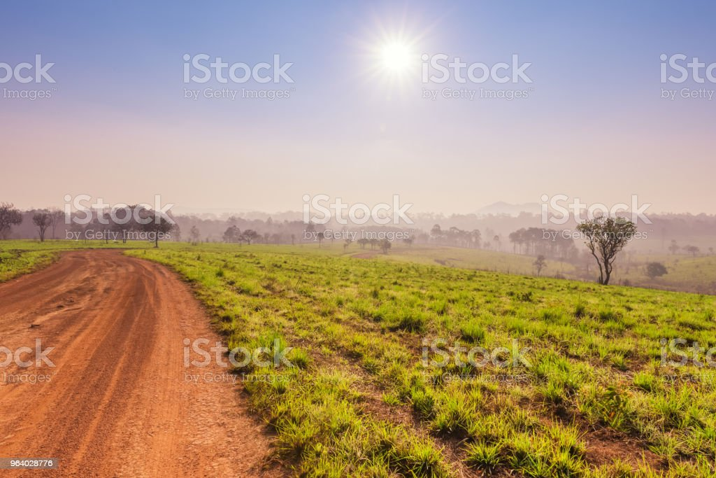 Savanna in National Park of Thailand named Thung Salaeng Luang - Royalty-free Adventure Stock Photo