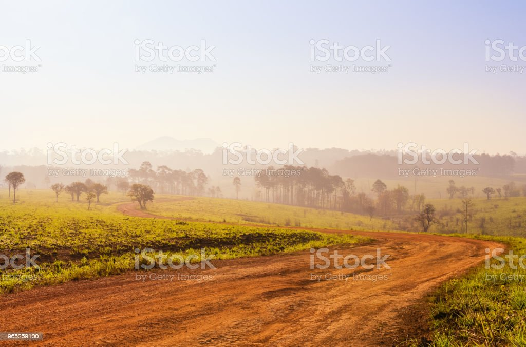 Savanna in National Park of Thailand named Thung Salaeng Luang royalty-free stock photo