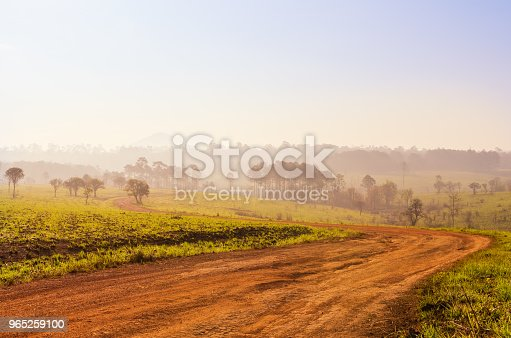 Savanna In National Park Of Thailand Named Thung Salaeng Luang Stock Photo & More Pictures of Adventure