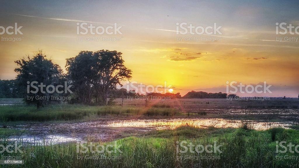 Savannah National Wildlife Refuge Waterway, Marsh, Pastel Sunset, Georgia stock photo