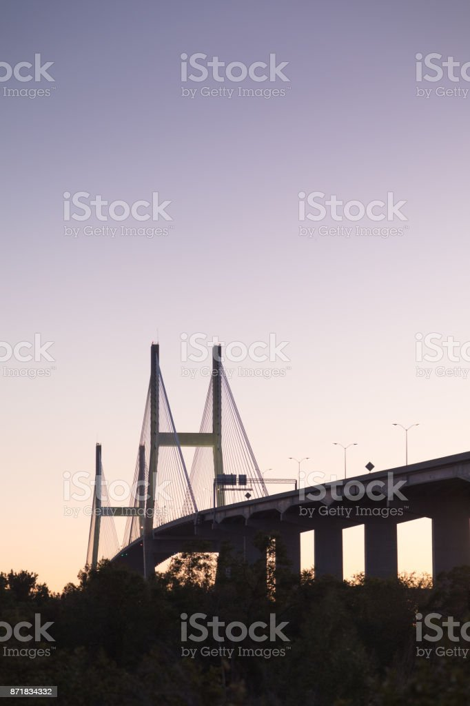 Savannah stock photo
