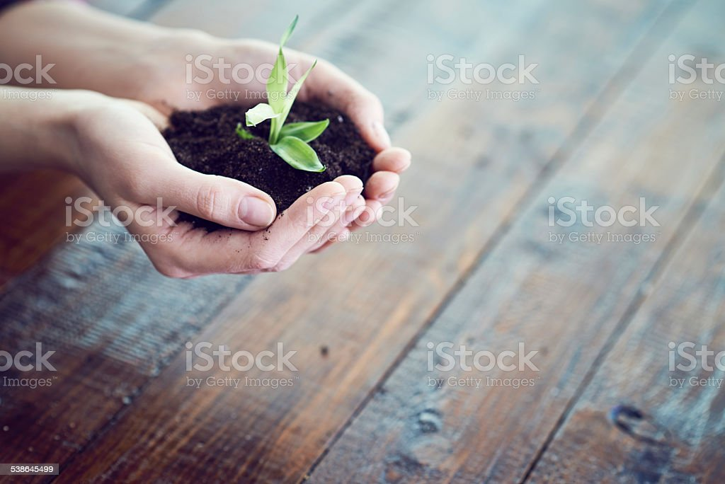 Save the nature royalty-free stock photo