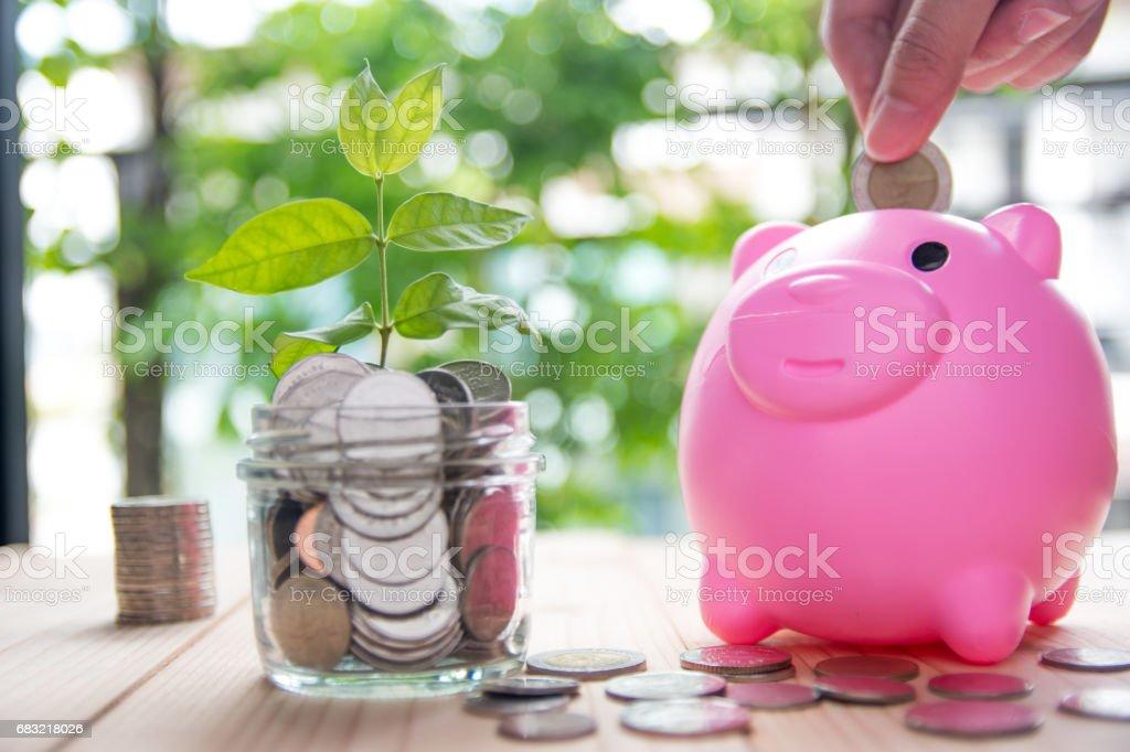 투자 개념 비즈니스 및 금융에 대 한 동전을 저장 royalty-free 스톡 사진