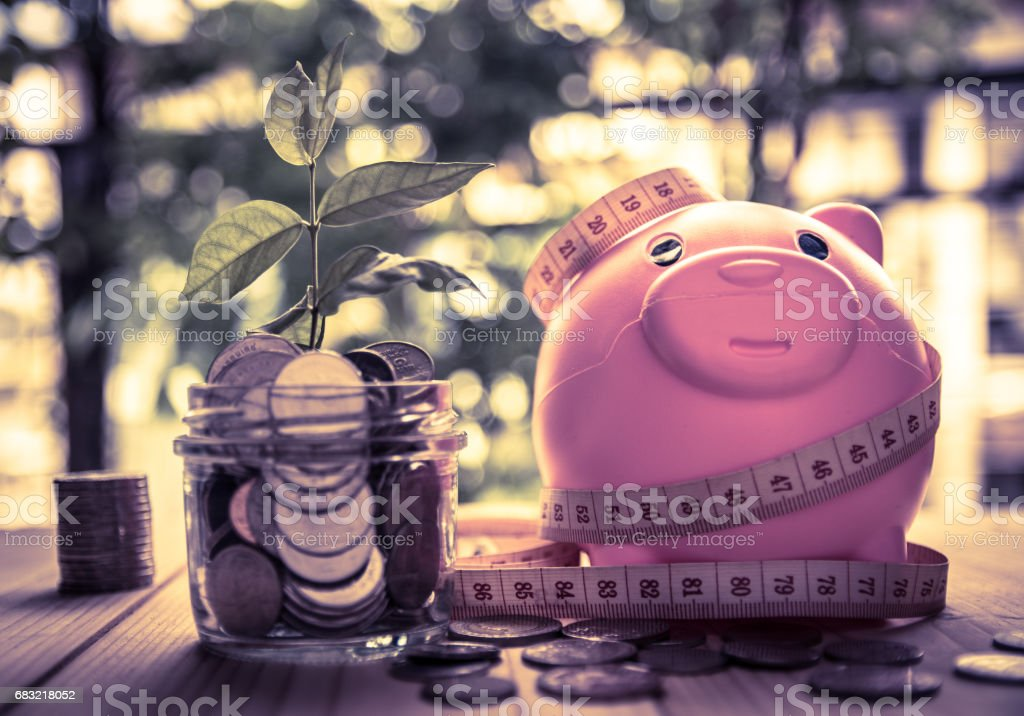 saving coins for investment concept business and finance foto de stock royalty-free