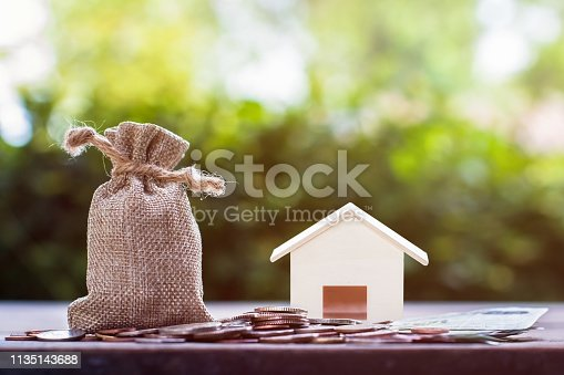 istock Saving for buying house or real estate investment program concept. 1135143688