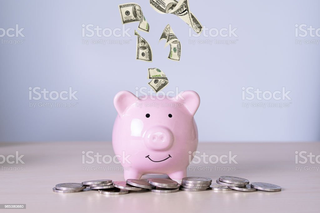 재무 회계 영 절약 절약 돈을 투자 관리 - 로열티 프리 개념 스톡 사진