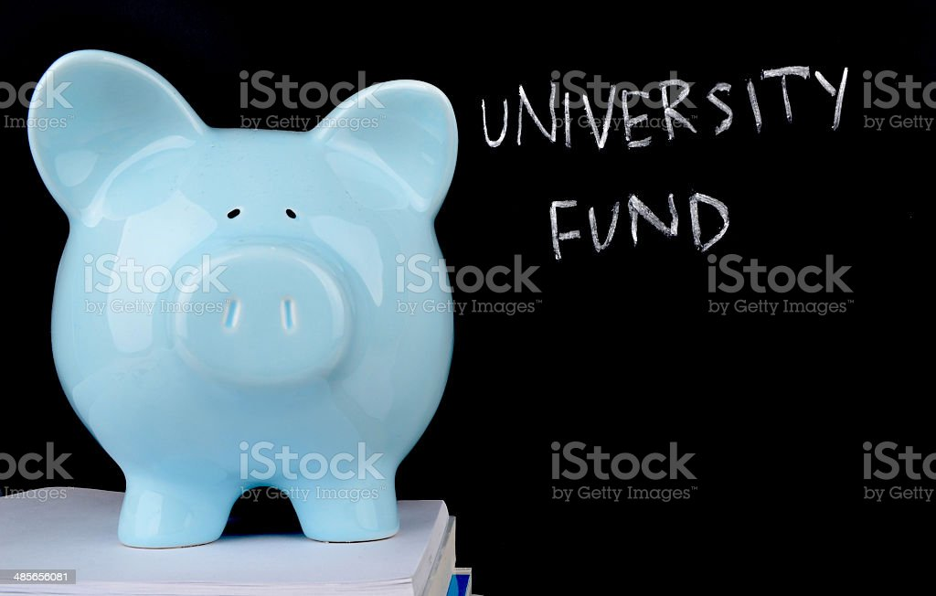 Saving for University royalty-free stock photo